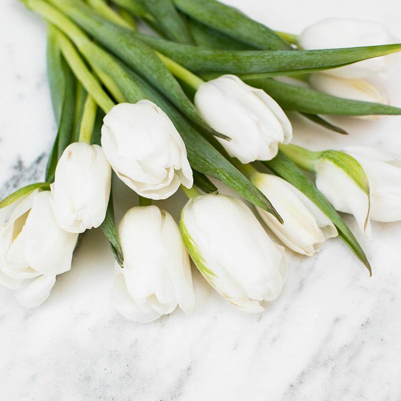 Top Wedding Flowers for the Season from Jet Set Planning featured on Nashville Bride Guide